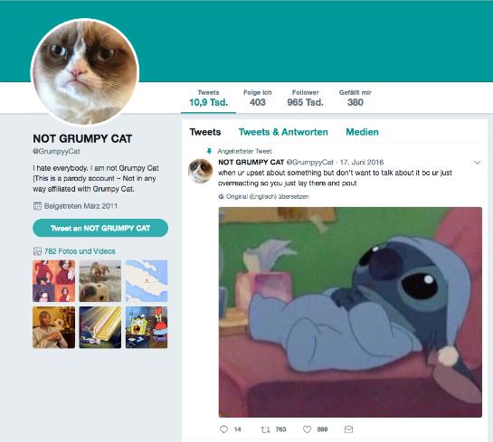 Adwizar Grumpy Cat Twitter
