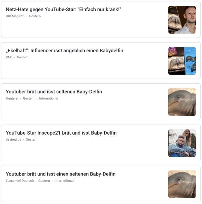 Google News Inscope Delfin Fleisch OMR