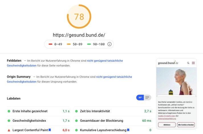 Google-Page-Speed-Analyse der Webseite Insights gesund.bund.de