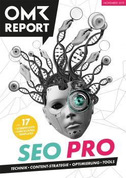 Professionals Guide to SEO