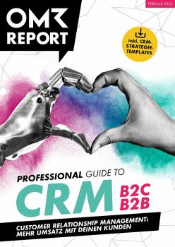 Professional Guide to CRM für B2C & B2B