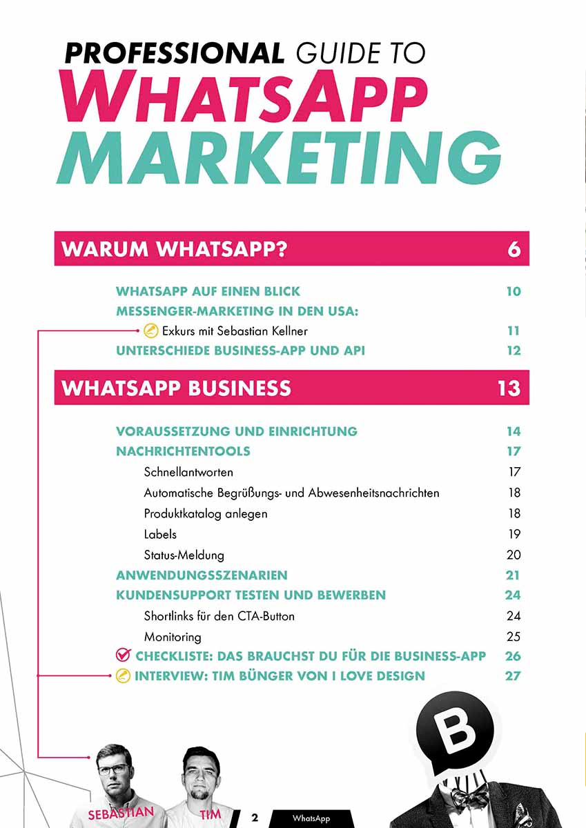 Professional Guide to WhatsApp Marketing