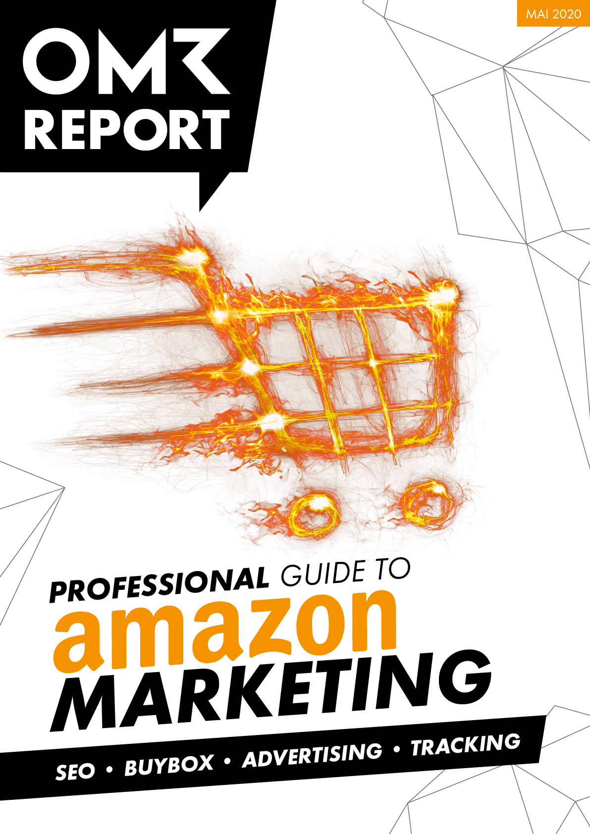 Professional Guide to Amazon Marketing