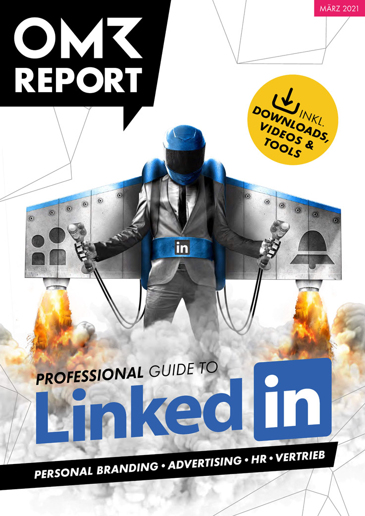 Professional Guide to LinkedIn