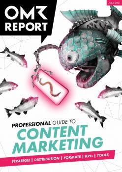 Professional Guide to Content Marketing