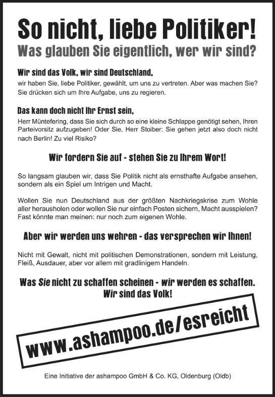 Die Anzeige von Ashampoo in der FAZ