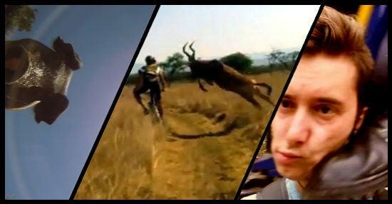 "Drei erfolgreiche Videos Jukin Media: (von links) ""Camera falls from airplane and lands in pig pen"",  ""Mountain Biker gets taken out by Buck"" und ""Kicked in the head by a train"" (Montage: OnlineMarketingRockstars)"
